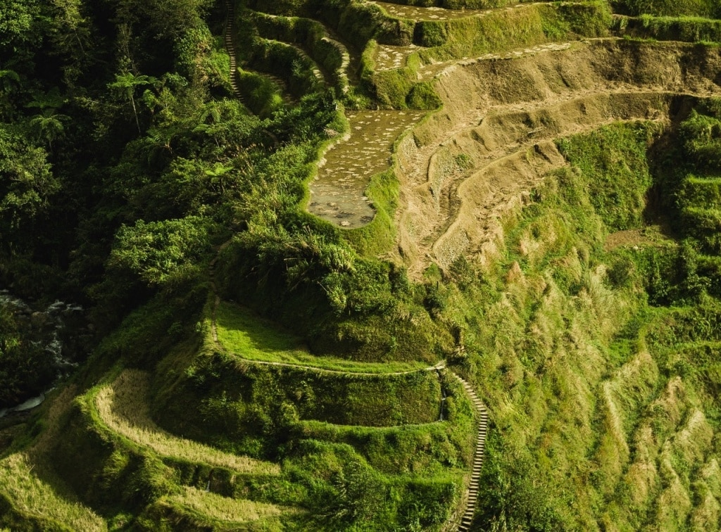 aerial photo of banaue rice terraces 3698534 2 - Philippine Bible Society